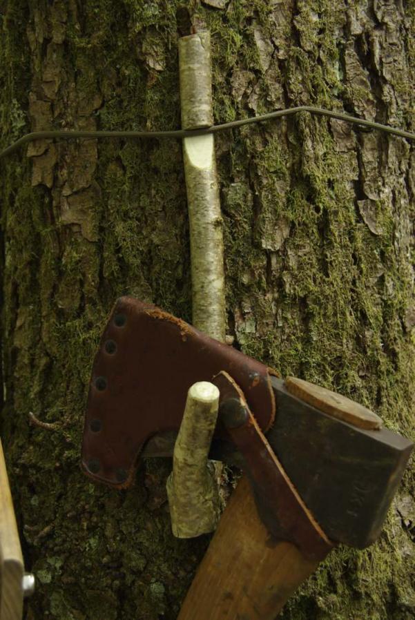treehook9