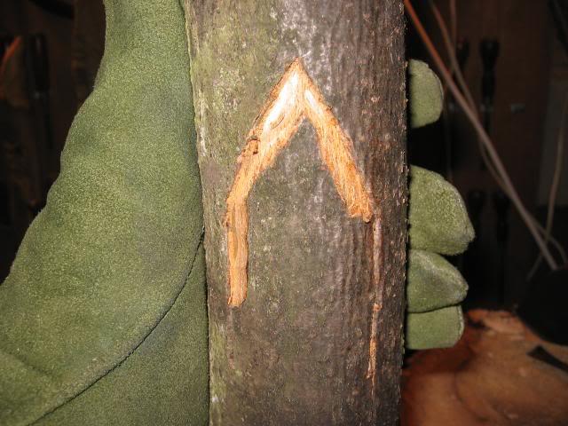 woodspirittutorial014
