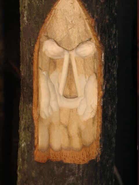 woodspirittutorial022