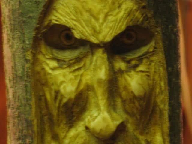 woodspirittutorial080
